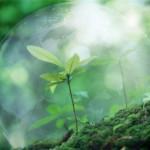 Экология и здоровье